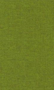 Groen (board lime 57)