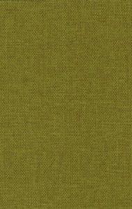 Donker groen (board mustard 06)